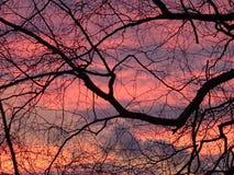 Beau coucher du soleil en Finlande, ici en Scandinavie Photos libres de droits