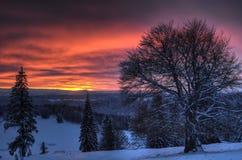 Beau coucher du soleil en horizontal de montagne de l'hiver Photographie stock libre de droits