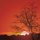 Beau coucher du soleil en montagnes Images libres de droits