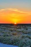 Beau coucher du soleil sur l'EL Djerid, désert du Sahara, TU de Chott de lac de sel Photos stock