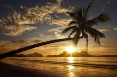 Beau coucher du soleil sur le fond des îles avec le palmier Photo libre de droits