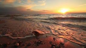 Beau coucher du soleil sur une plage sablonneuse tropicale banque de vidéos