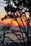 Beau coucher du soleil tropical sur la mer images libres de droits