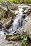 Beau courant de cascade coulant parmi des pierres Photo stock