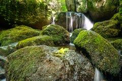 Beau courant de montagne avec Moss Covered Stones Photos libres de droits
