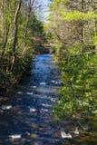 Beau courant sauvage de truite de montagne en Giles County, la Virginie, Etats-Unis image stock