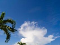 Beau, cumulus dans le ciel bleu photos stock