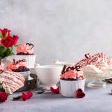 Beau cupecake de chocolat avec la meringue Photographie stock