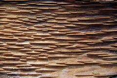 Beau découpage en bois photographie stock