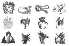 Beau dragon noir et blanc réglé sur le fond blanc Photo stock