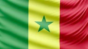 Beau drapeau réaliste 4k du Sénégal banque de vidéos