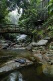 Beau en cascade de Gabai de nature située dans la Malaisie, stupéfiant photographie stock libre de droits