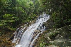 Beau en nature, cascade tropicale de cascade stupéfiante images stock