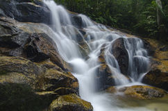 Beau en nature, cascade tropicale de cascade stupéfiante roche humide et moussue, images stock
