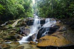 Beau en nature, cascade tropicale de cascade stupéfiante roche humide et moussue, photographie stock