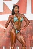 Beau et Buff Pro Figure Competitor Image stock