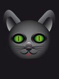 Beau et mystérieux chat sur un fond noir Illustration Stock