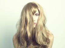 Beau femme avec le cheveu magnifique Images stock