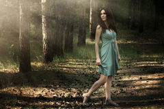 Beau femme dans le paysage de nature Photographie stock libre de droits