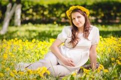 Beau femme enceinte en stationnement Images stock