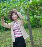 Beau femme travaillant dans le jardin Photos libres de droits