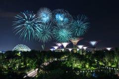 Beau feu d'artifice au-dessus des jardins par la baie la nuit, Singapour Photographie stock