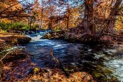 Beau feuillage d'automne sur Guadalupe River, le Texas photo libre de droits