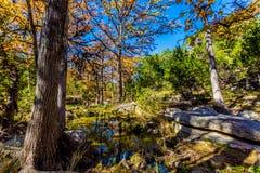 Beau feuillage d'automne sur Hamilton Creek, le Texas Image stock