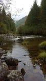 beau fleuve dans les montagnes images libres de droits