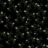Beau fond avec des fleurons Photographie stock