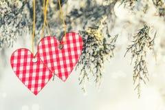 Beau fond de vacances de valentine avec deux coeurs à carreaux Images stock