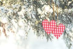 Beau fond de vacances de valentine avec deux coeurs à carreaux Photos stock