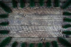 Beau fond en bois avec des branches d'arbre et une belle vignette Images libres de droits