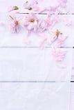 Beau fond floral avec des fleurs de ressort Photo stock