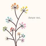 Beau fond floral de fond… avec les fleurs colorées Photos stock