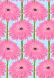 Beau fond sans couture avec la fleur rose de gerbera de tige illustration libre de droits