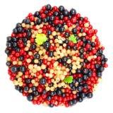 Beau fruit Image libre de droits