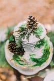 Beau gâteau de mariage décoré des pinecones et des branches impeccables Images libres de droits