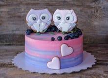 Beau gâteau fait maison avec le rose avec de la crème bleue, décorée des figurines de hibou Photographie stock libre de droits