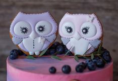 Beau gâteau fait maison avec le rose avec de la crème bleue, décorée des figurines de hibou Photographie stock