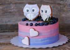 Beau gâteau fait maison avec le rose avec de la crème bleue, décorée des figurines de hibou Image libre de droits