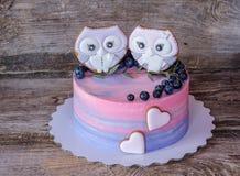Beau gâteau fait maison avec le rose avec de la crème bleue, décorée des figurines de hibou Photos stock