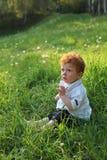 Beau garçon red-haired sur l'herbe photos stock