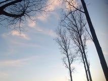 Beau gentil frais naturel de ciel Photos libres de droits