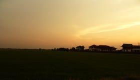 Beau gisement de riz avec le lever de soleil, Photographie stock