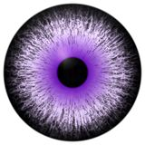 Beau globe oculaire blanc pourpre du noir 3d Halloween illustration stock