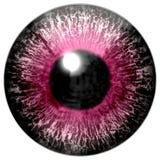 Beau globe oculaire rouge blanc du pourpre 3d Halloween illustration libre de droits