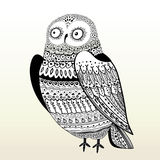 Hibou graphique Photo stock