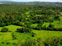 Beau greenscape-III de Ratnagiri Photos libres de droits