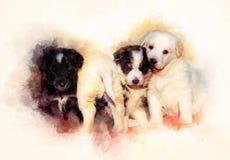 Beau groupe adorable de chiots de chien de berger et de fond doucement brouillé d'aquarelle Photo libre de droits